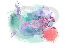 Puma, para imprimir, ilustración de puma, dibujo de puma, arte digital, ilustraciones de animales, acuarela, cuadro, puma