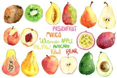 Vector bright watercolor fruits by Dinkoobraz on Creative Market