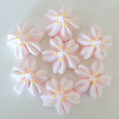 桜のメレンゲキス ~Cookie Crumbs~クッキー・クラムズのアイシングクッキー