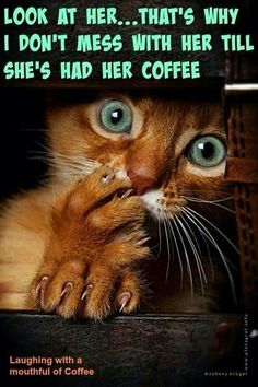 Hahaha! Gotta have that coffee!