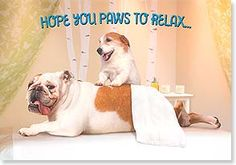 Father's Day Card - Hope you paws to relax...  | Michael Quackenbush | 24435 | Leanin' Tree
