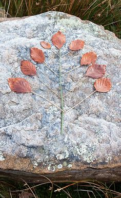 Leaf Tree by Land Art for Kids, via Flickr