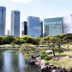 浜離宮恩賜庭園 (Hamarikyu Garden) in 中央区, 東京都