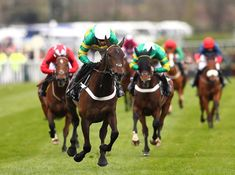 19 Best Betting on Horse Racing images in 2016 | Horse