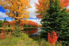 """Breathtaking Autumn"" - Photo by Mike Crowley.  Mabel Lake on County Hwy. B north of Boulder Junction Wisconsin."