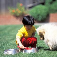 Losing a Pet — How to Help Your Toddler Deal With Death You know all dogs go to heaven, but how do you comfort your toddler about the death of a pet? Here's how to help your little one cope with the loss.