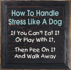 Well, there you go.  Who knew stress relief was so easy!