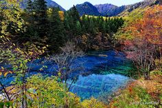 Five Flower Lake, Jiuzhaigou Valley Scenic and Historic Interest Area, Nanping County, Sichuan Province, Southwestern China