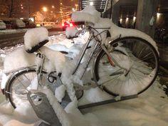 Winter Velo