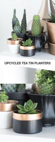 Tiny tea tin planter upcycle in 10 minutes #upcycle #diy #craft #planter #diyplanter #succulents #succulentplanter #teatin #teatinplanter #succulentplanter #garden #gardenideas Diy Recycling, Upcycle, Diy Home Decor Projects, Home Crafts, Diy Crafts, Upcycling Projects, Diy Planters, Planter Pots, Succulent Planters