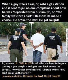 Wake up America! Illegal aliens, or whatever they're called nowadays, broke the law. They made a choice. This is a great analogy. Liberal Logic, Stupid Liberals, Liberal Democrats, Politicians, Conservative Politics, Conservative Quotes, God Bless America, We The People, Memes