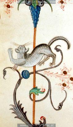 Stretching cat | from a music manuscript,  1481