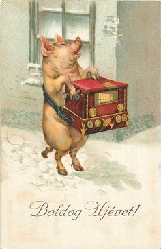 musical luck humanized pig caricature new year fantasy music box machine Holiday Postcards, Vintage Postcards, Happy Pig, Mushroom Decor, Pig Art, Cute Piggies, This Little Piggy, Victorian Art, Bird Drawings