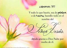 Colosenses 3:17 Y todo lo que hacéis, sea de palabra o de hecho, hacedlo todo en el nombre del Señor Jesús, dando gracias a Dios Padre por medio de él.