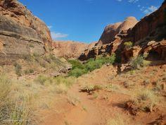 natural rock - Recherche Google