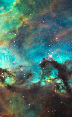 Star cluster NGC 2074, lying about 170,000 light-years away near the Tarantula Nebula, observed by the Hubble Space Telescope. (HubbleSite)