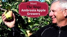 Meet Your BC Organic Ambrosia Apple Growers Richard and Robyn King