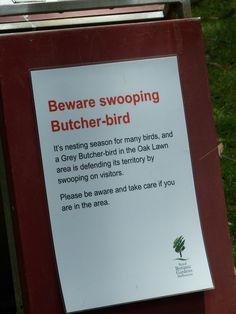 Beware swooping butcher bird sign....Royal Botanic Gardens, Melbourne Australia from www.beckwanderer.com