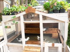 duck pond - clever design using aquaponics - recycles the water to the plants on top, and then back to the ducks