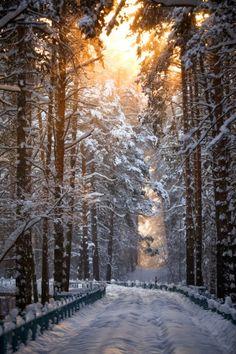 Snow Road, Novosibirsk, Russia