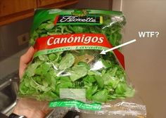 If I was on the fence before re:bagged or fresh lettuce, this has helped me pick a side...