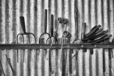 The Tool Shed www.davidpolandphotography.com Tool Sheds, Garden Tools, Ireland, Photo Galleries, Gallery, Pictures, Shed Houses, Photos, Roof Rack