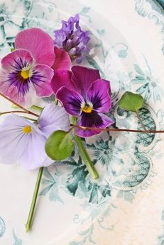 plate & flowers