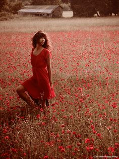 coquelicot by Stephane Delavega on 500px
