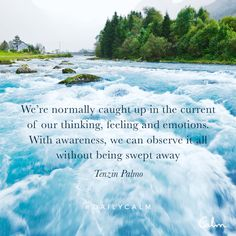 We're normally caught up in the current of our thinking, feeling and emotions. With awareness, we can observe it all without being swept away. Good Quotes, Inspirational Quotes, Spiritual Awakening, Spiritual Quotes, Calm App, Daily Calm, Different Quotes, Yoga, Daily Affirmations