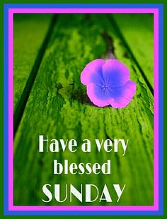 Sunday greetings on facebook hope sunday peaceful dj picture have a very blessed sunday morning blessingsmorning prayerssunday greetingsblessed m4hsunfo