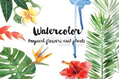 Arte vectorial : watercolor tropical plants