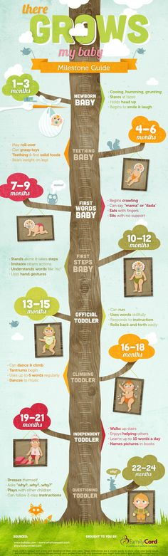 Baby Milestones Guide - Developmental milestones your baby will hit between 1 month and 24 months