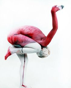 The Human Flamingo; bodypainting artist Gesine Marwedel transforms this beautiful woman into a pink flamingo. Street Art, Flamingo Painting, Flamingo Art, Pink Flamingos, Flamingo Photo, Foto Art, Art Design, Interior Design, Optical Illusions