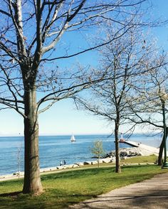 This view gets me every time #Oakville #lakeshore #oakvillelakeshore #views #beauty #lakeontario #sunnydays #sailboat #pier #mothernaturesbeauty by bhavishalad