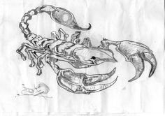 original sketch for a tattoo I did on a friends upper back, pic to follow