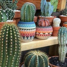 Great photo by📷@earthwindandcactus 🌵💜🌵💜🌵💜🌵💜🌵💜🌵💜🌵💜 #cactus #cactuslover #cacti #cactusofinstagram #jangalow #plants #cactusaddict #ceramicplanter #ceramic #planters #cactusdecor #cactusclub #cactuslover #cactilove #aztec #aztecstyle #colorfuldecor #gardening #outdoor #earthwindandcactus #smallplanters #southwestern #native #nativeamerican #myart #mypottery #pots #clay