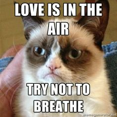 love is in the air...try not to breathe!