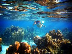 Cancun, Mexico beaches | Cancun as a Challenging Underwater Expedition