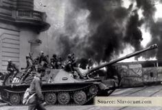 essay iraq war