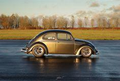 #vw #aircooledvw #vwclassic #volks #vwdub #vwlove #vwstories #instago #instancool #style #show #me #classic #cars #top #vwbeetle #beetle #rust #follow #instagood #oldschool #road #wheels #photography #photooftheday #instadaily #bestofday #fusca #beetles #vocho #fuca #fuke #vwbeetle #bezorinho #volkswagen #herbie #aircooled #käfer #kevers #ciaróga #scarabei #gândaci #skalbaggar #brouci #böcekleri #mabhungane #coleotteri #coléoptères #escarabajos #bug #hoodride #vdablio
