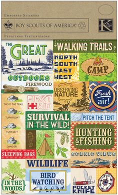 I love these Boy Scouts Foil Embossed Stickers 4.5 X6 Sheet-Outdoor, Camping & Survival for kids crafts @Kathryn Whiteside johnson Crafts
