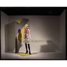 (A través de CASA REINAL) >>>>  Cavalli.