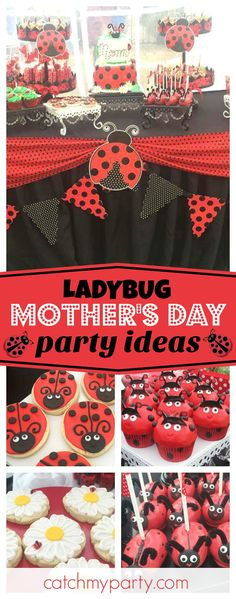Take a look at this fabulous Mother's Day ladybug party. Such a great theme, perfect for birthday parties too! See more party ideas and share yours at CatchMyParty.com