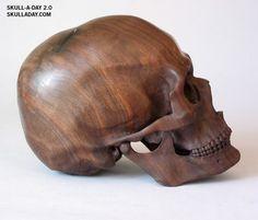 black walnut carved skull by Dan Lucas