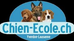Photo Lausanne, Canton, Education Canine, Week End, Signs, Animals, Logo, Palms, Dog Owners