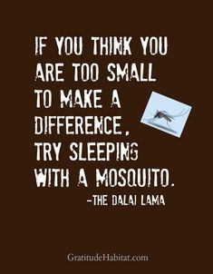 """""""If you think you are too small to make a difference try sleeping with a mosquito"""" - The Dalai Lama Words Quotes, Wise Words, Me Quotes, Motivational Quotes, Funny Quotes, Inspirational Quotes, Sayings, Career Quotes, Positive Quotes"""
