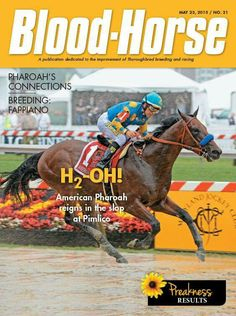 American Pharaoh Horse Magazine, Preakness Stakes, Triple Crown Winners, Champions Of The World, American Pharoah, Racehorse, Race Day, Thoroughbred, Kentucky Derby