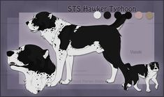 STS Dog- Vasuki by ShockTherapyStables on DeviantArt