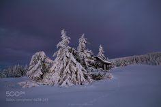 Winter Island by JrnAllanPedersen #Landscapes #Landscapephotography #Nature #Travel #photography #pictureoftheday #photooftheday #photooftheweek #trending #trendingnow #picoftheday #picoftheweek