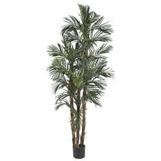 Wholesale 6 Ft Robellini Palm Silk Tree, [Decor, Silk Flowers] >>> You can get additional details at the image link.